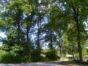 Eichenallee Südkampweg