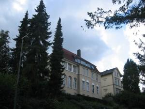 Dornberger-Str01-Fichten