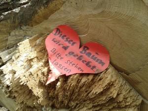 """Hier zeigen uns die Herren Baumabsäger, wie sie Bäume """"lieben"""": mit der Kettensäge. 15.7.2017"""