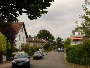 Ein ortsbildprägender Baum: Blick von der südlichen Maagshofstraße